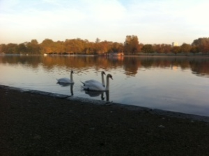 Sunny morning walk through Hyde Park on the way to the RGS