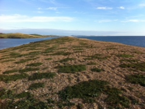 Chesil Beach: The Fleet to the left, sea to the right.